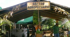 Bugaba el granero de Panamá 2