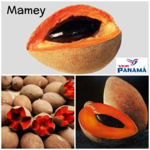 mameyes