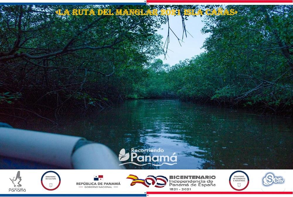 la ruta del manglar